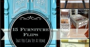 15 Painted Furniture Project Ideas